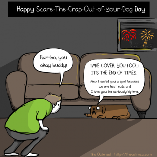 photo of dog hiding from fireworks